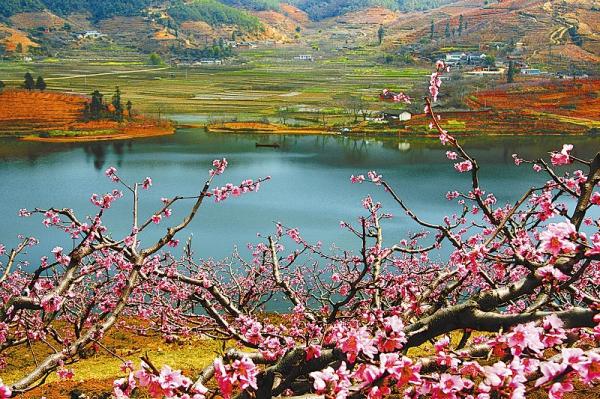 cn  米易海塔景区     2016年,是旅游项目推进年.