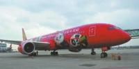 3月15日,海航熊猫涂装波音787飞机执飞成都至洛杉矶航班。 - Sc.Chinanews.Com.Cn