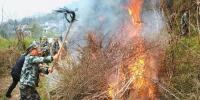 我省启动为期近百天的森林草原防火督导 覆盖整个防火季 - 人民政府
