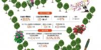 2017年度全省国土绿化公报发布 - 人民政府