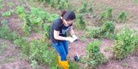 开江县钩端螺旋体病和流行性出血热 疫源动物监测工作顺利开展 - 疾病预防控制中心