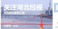 春晚节目为武汉改变 白岩松这段话太提气 - News.Sina.com.Cn